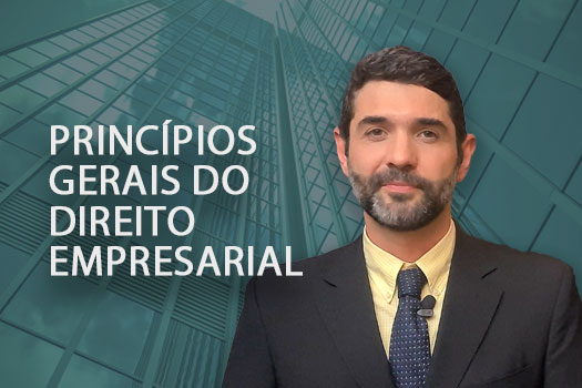 Princípios gerais do Direito Empresarial | Hernandez Perez Advocacia Empresarial